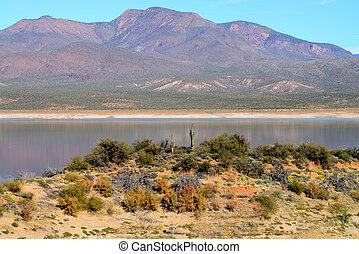 roosevelt, arizona, see