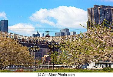 Roosevelt Island Tramway and Queensboro Bridge in blooming season. Manhattan to Roosevelt Island connection, New York.
