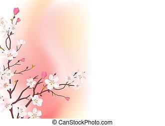 rooskleurige achtergrond, licht, bloeien, boomtak