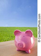 rooskleurige piggy bank, in, een, groen veld