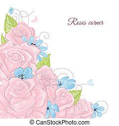 rooskleurige rozen, bouquetten, hoek, versiering, op, witte achtergrond