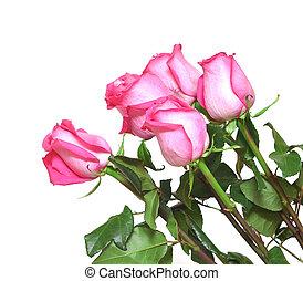 rooskleurige rozen, witte , bouquetten