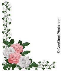 rooskleurige rozen, witte , grens, trouwfeest