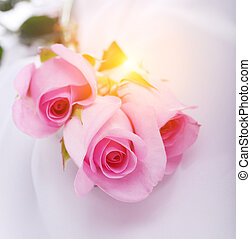 rooskleurige rozen, witte , zijde