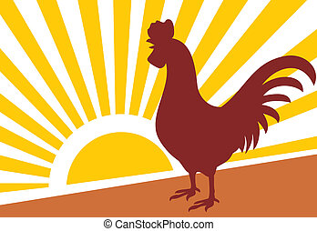 rooster and morning sun (rooster at dawn)