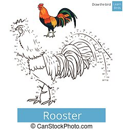 Rooster bird learn to draw vector - Rooster learn birds...