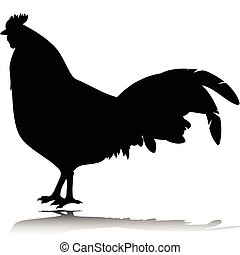 rooster black vector silhouettes