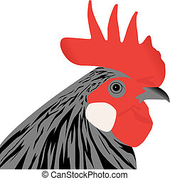 rooster - vector rooster head illustration on white...