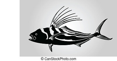 Rooster fish. - A rooster fish in silhouette.