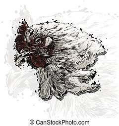 Rooster head vector colorful hand draw sketch stile vector...