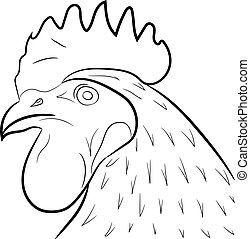 rooster head vector illustration contour