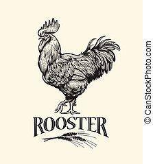 Rooster Illustration in Vintage engraving style.