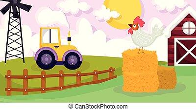rooster in hay tractor wnidmill barn field farm animals