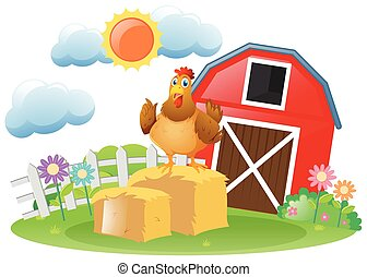 Rooster in the farm