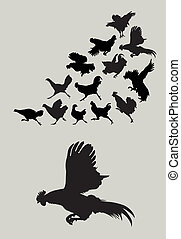 Rooster, chicken, cock, hen, action, running, flying, walking, standing, etc. Smooth and detail silhouettes. Good use for symbol, logo, sticker design, wallpaper, background, or any design you want. Easy to edit or change color.