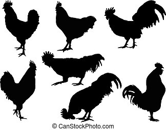 Rooster Silhouette collection