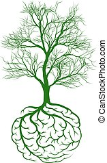 Root brain concept