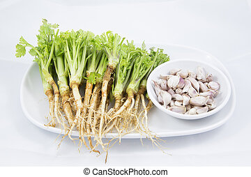 Root of Parsley and Garlic