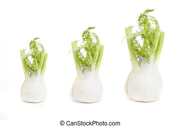 Root of parsley on a white background. Three roots of parsley on a white background.