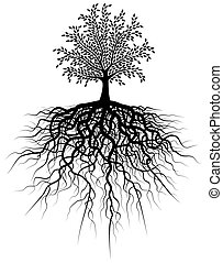 Root tree - Illustration of a tree and its roots
