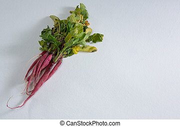 Root vegetable on a white background - Close-up of root ...