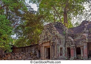 Roots cover the ruins of Ta Prohm Temple, Angkor
