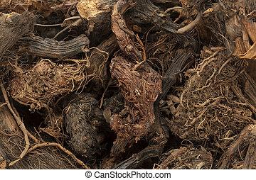 roots., organische , spikenard