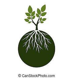 roots., vecteur, vert, illustration., arbres