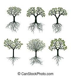 roots., vetorial, verde, illustration., árvores