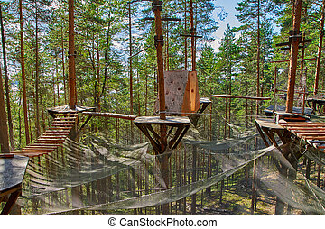 Rope park on a summer day in pine forest
