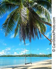 Rope swing at the beach on Nananu-i-Ra island, Fiji