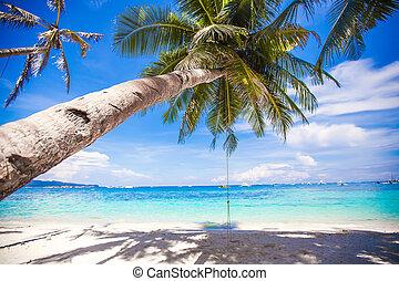 Rope swing on big palm tree at white sandy beach