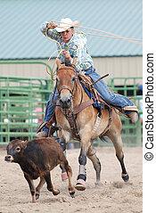 roping, jonge, kalf, cowboy
