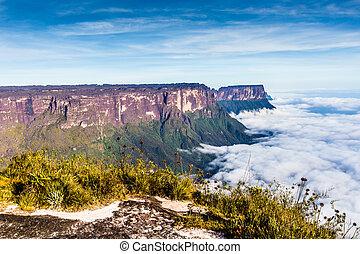 roraima, niebla, américa, -, vista, venezuela, kukenan, ...