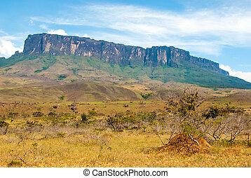 Roraima Tepui, Gran Sabana, Venezuela
