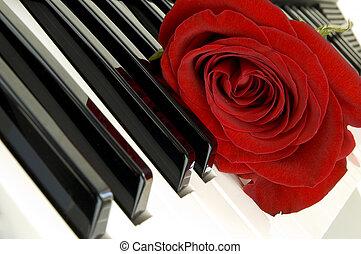 Ros, 鋼琴, 紅色