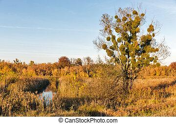 Ros river valley autumn landscape at sunset, Ukraine.
