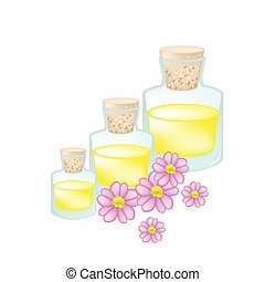 rosa, aceite, achillea, o, milenrama, millefolium, esencial