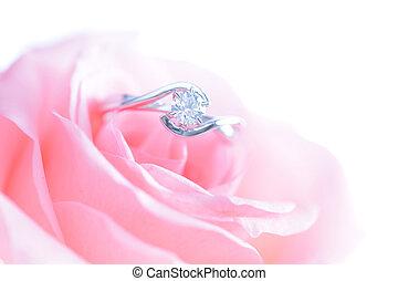 rosa, anillo, flor