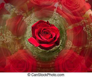 rosa, Arriba, confuso, Plano de fondo, cierre, rojo