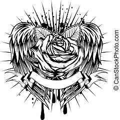 rosa, asas