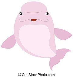rosa, ballena, beluga, fondo blanco