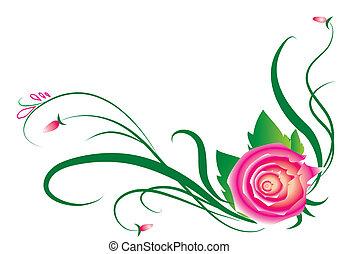rosa, bianco, elementi, disegno