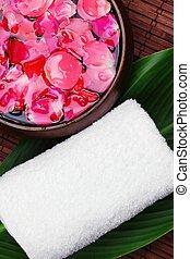 rosa blütenblatt, spa