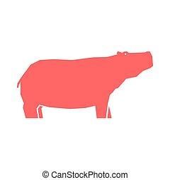 rosa, blanco, hipopótamo, aislado