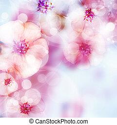 rosa, blomma, och, bokeh