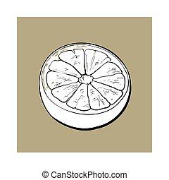 rosa, bosquejo, maduro, toronja, ilustración, naranja, vector, mitad