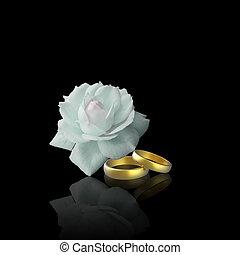 rosa, branca, anéis, dourado