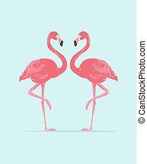 rosa, c, vector, ilustración, flamenco