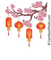 rosa, cinese, ciliegia, isolato, illustrazione, quattro, fondo., flowers., lanterne, ramo, bianco rosso